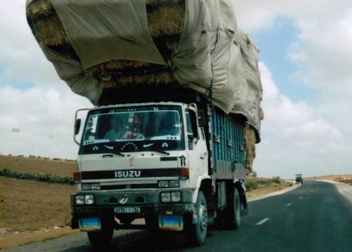 Un esempio tipico di camion carichi fino all'impossibile
