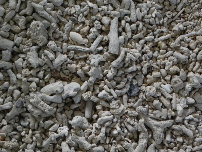 Le strade ricoperte di corallo