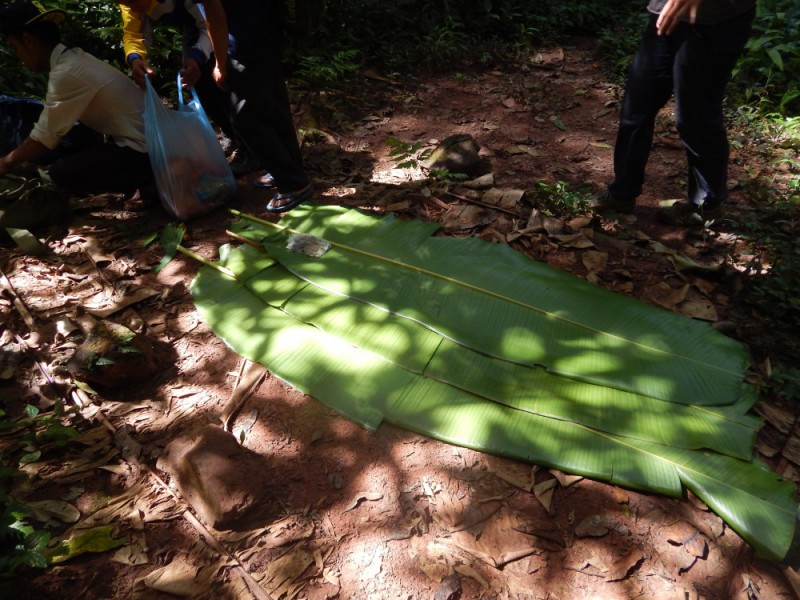 Trekking nella giungla in Laos: il 'tavolo' per il pranzo