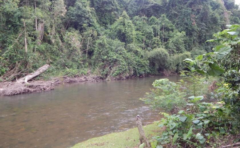 Trekking nella giungla in Laos: la 'vasca da bagno'